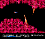 Salamander (NES)